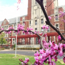 SEM Villa Grounds (Spring/Summer)